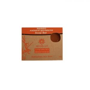 Natural Life Mango soap bar